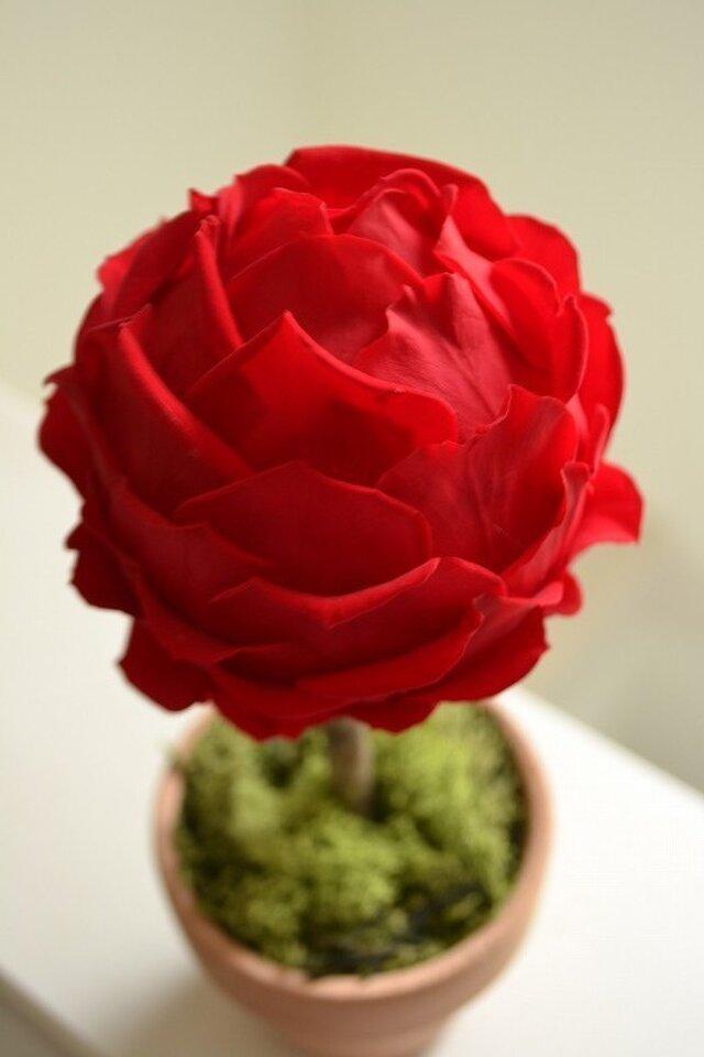 Flower topiary S (r)の画像1枚目