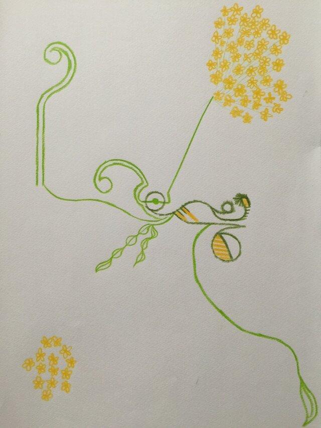 黄色い花の画像1枚目