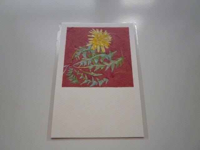 タンポポ(ポストカード)の画像1枚目