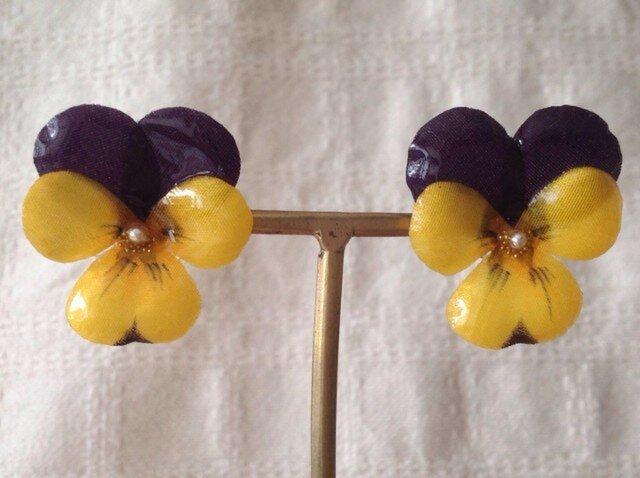 染め花を樹脂加工したビオラピアス( M・紫黄色)の画像1枚目