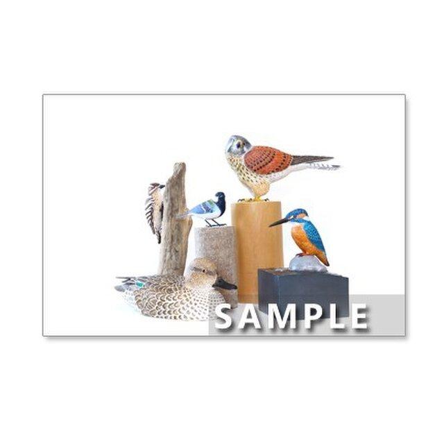 141)鳥の世界 バードカービング     ポストカード5枚組 の画像1枚目