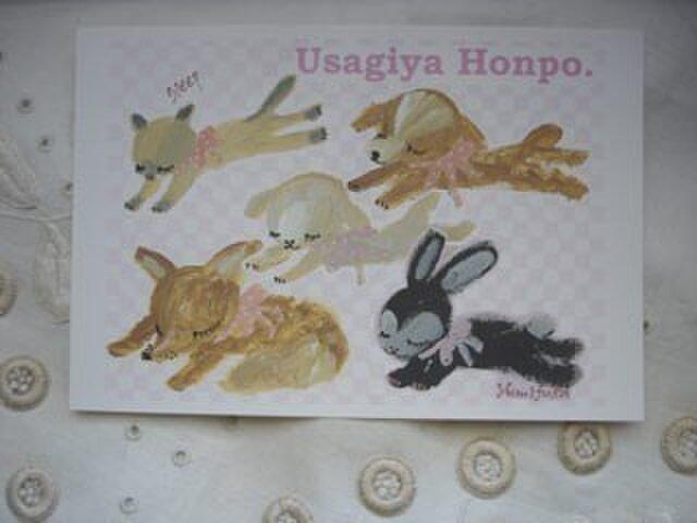 ポストカード6(うさぎ&猫&犬&ヒツジ&キツネ)3枚組の画像1枚目