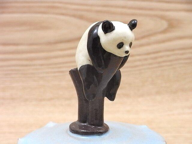 水青樹上爆睡大熊猫耳付飴小壺−Bの画像1枚目