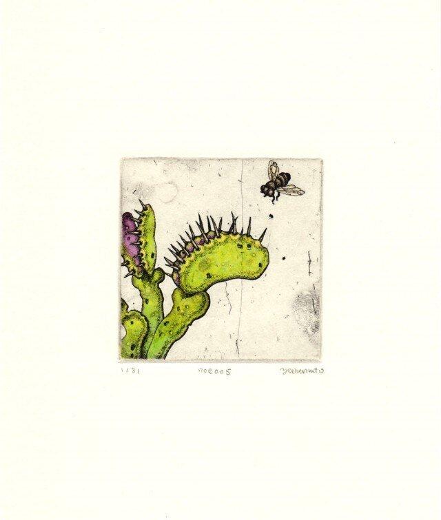 食虫植物の銅版画01 カラータイプ1の画像1枚目