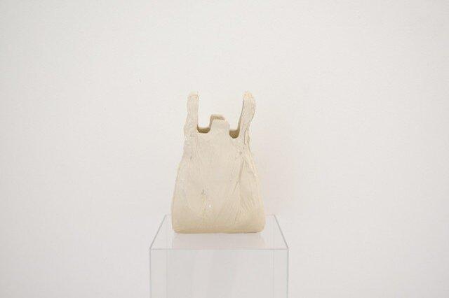 日常のコピー ビニール袋 (現代美術)の画像1枚目