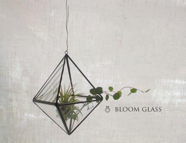 ステンドグラスのテラリウム:ひし形の画像1枚目