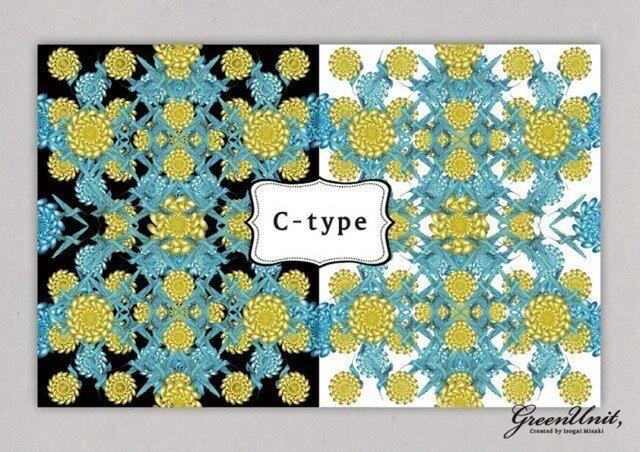 布プリント『Landscape to Bloom』C-typeの画像1枚目