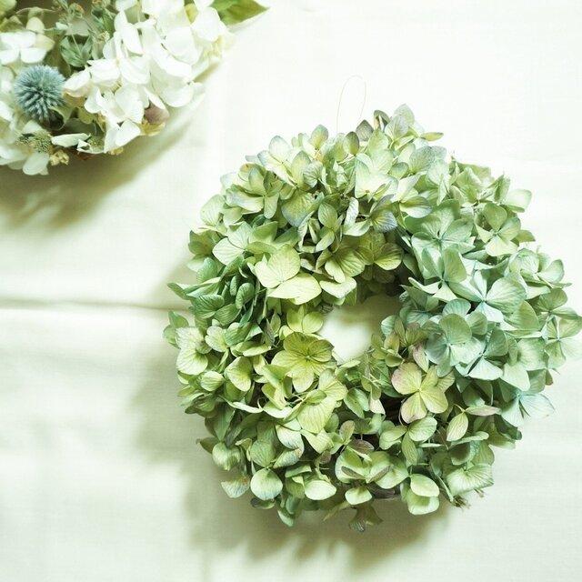 秋色紫陽花 wreathの画像1枚目