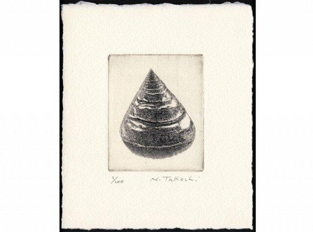 貝殻・E / 銅版画 (作品のみ)の画像1枚目