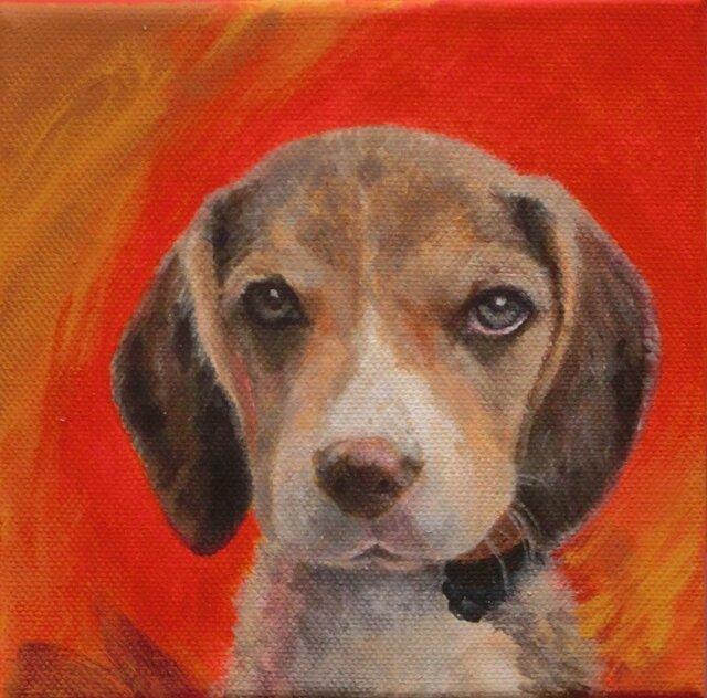 猫の肖像・犬の肖像カラーの画像1枚目
