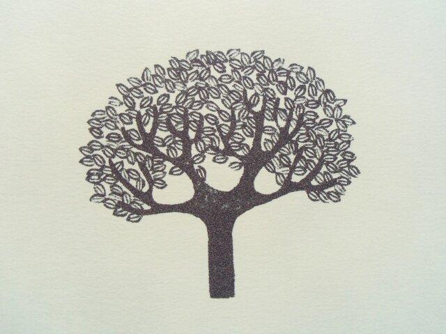 ポストカード(2枚)  木の画像1枚目