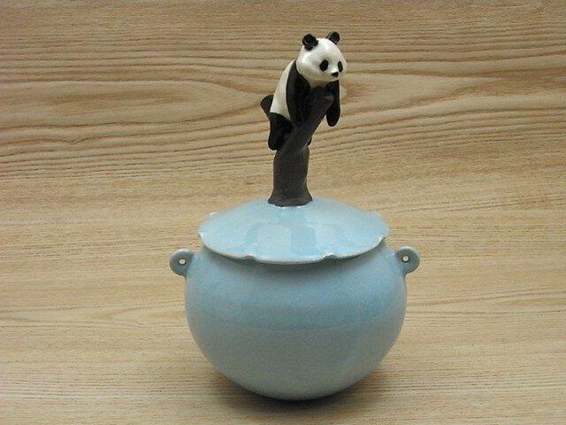 水青樹登大熊猫耳付飴小壺ーAの画像1枚目