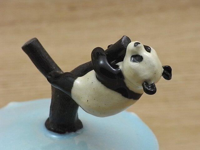 水青樹登大熊猫耳付飴小壺ーHの画像1枚目