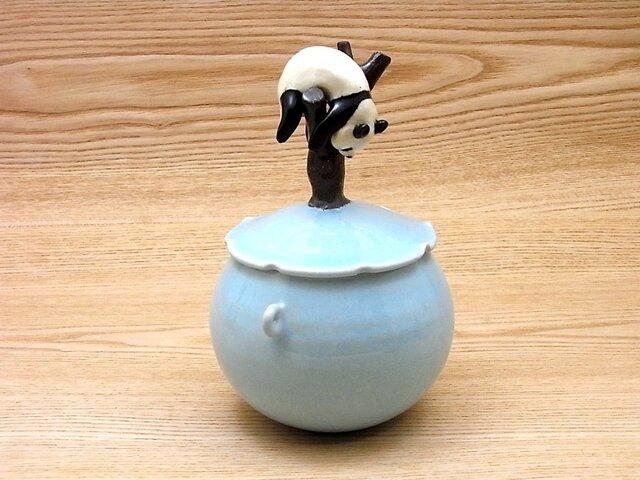 水青樹上爆睡大熊猫耳付飴小壺−Fの画像1枚目