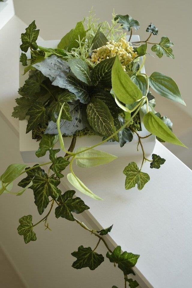Interior Art flower&green M/Yの画像1枚目