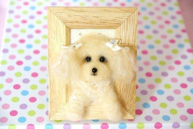 ★☆ 【癒しトイプードル 犬 1 】アルパカ使い ☆★の画像1枚目