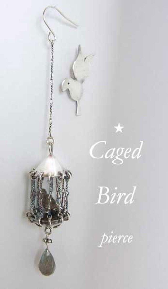 「籠の鳥」はいつか飛び立つ?ピアスの画像1枚目