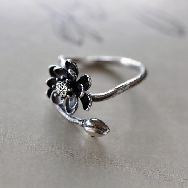 【藝圃】ハスの花-シルバー指環の画像1枚目