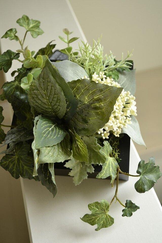 Interior Art flower&green S/BKの画像1枚目