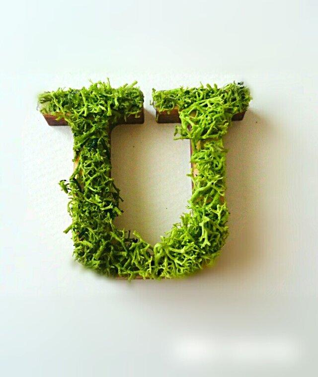 アルファベット オブジェ(モス) 木製『U』×1点の画像1枚目