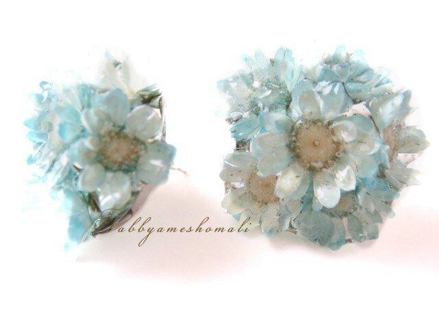 小さな花束のピアス-青-の画像1枚目