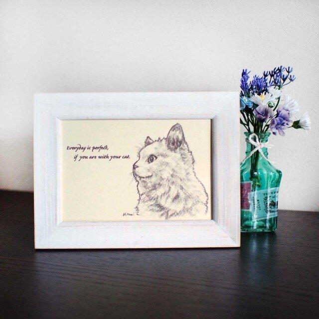 ポストカード 「猫と一緒なら、毎日が完璧。」同柄4枚の画像1枚目