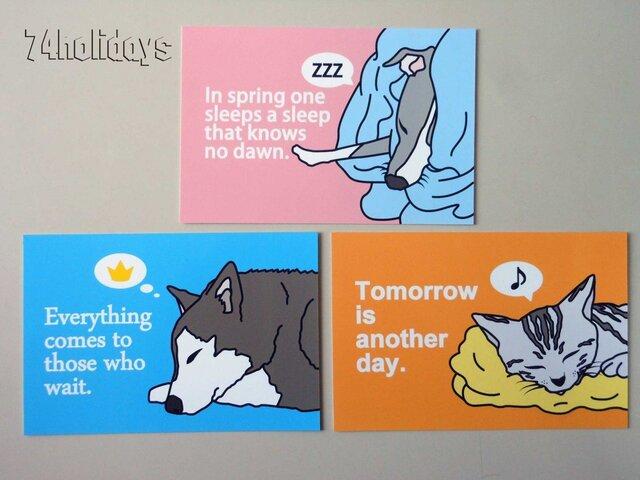 動物の寝顔ポストカードセット3枚【NAYO-SET-PA01】の画像1枚目