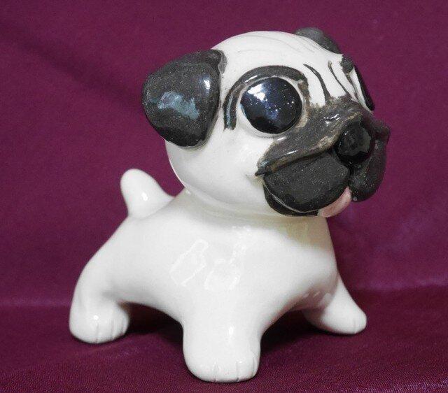 犬(パグ)の画像1枚目