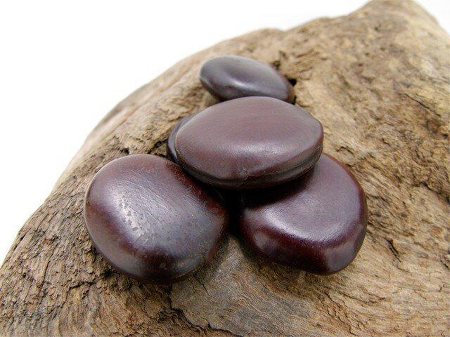 モダマの豆(M)の画像1枚目