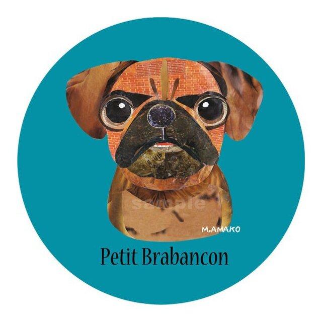 プチ ブラバンソン《犬種名ステッカー/小型犬》の画像1枚目
