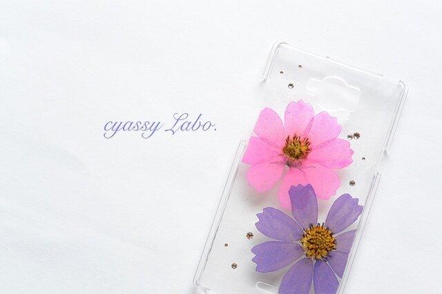 躑躅色と菖蒲色の秋桜(コスモス)押し花スマートフォンケースの画像1枚目