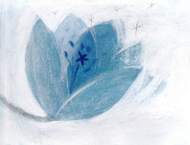 青い花の画像1枚目