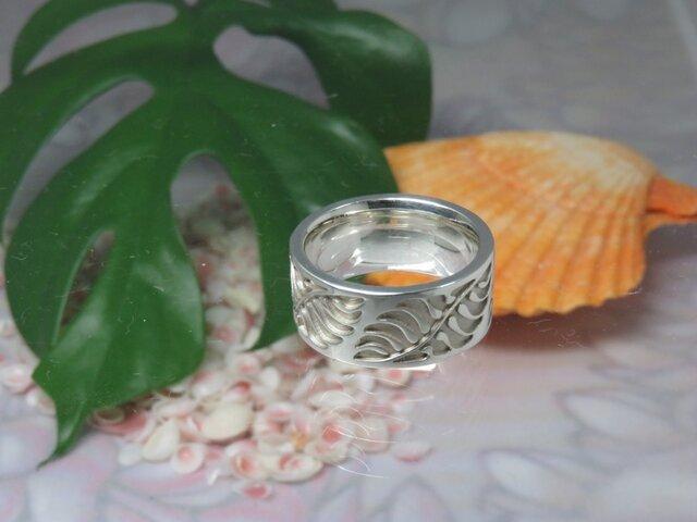 Natal Cycad Ringの画像1枚目