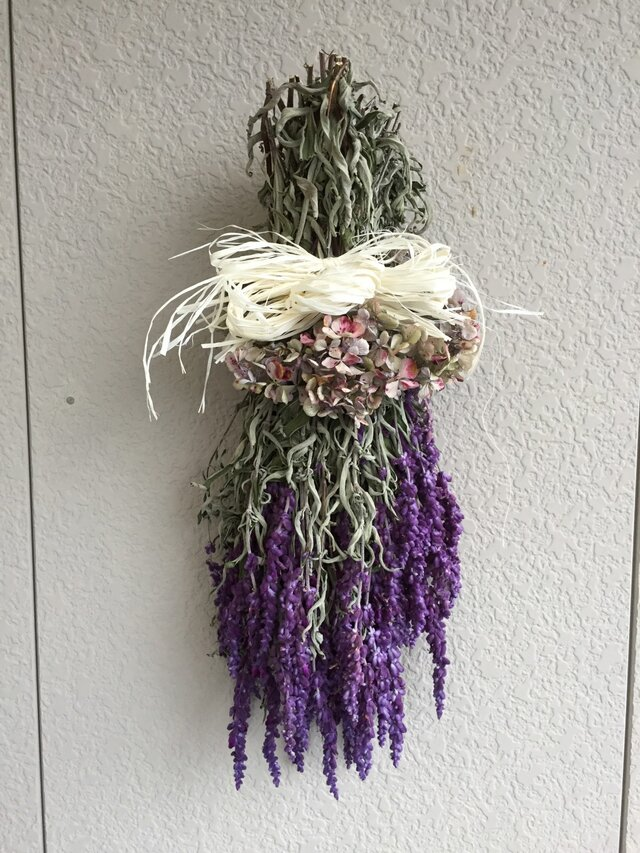アメジストセージと紫陽花の画像1枚目