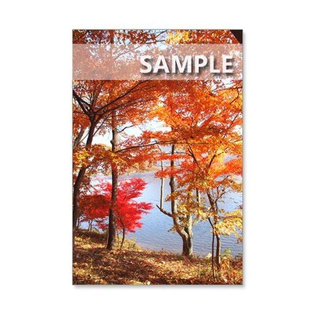 1174) 紅葉の美しい榛名山、榛名湖風景  ポストカード5枚組の画像1枚目