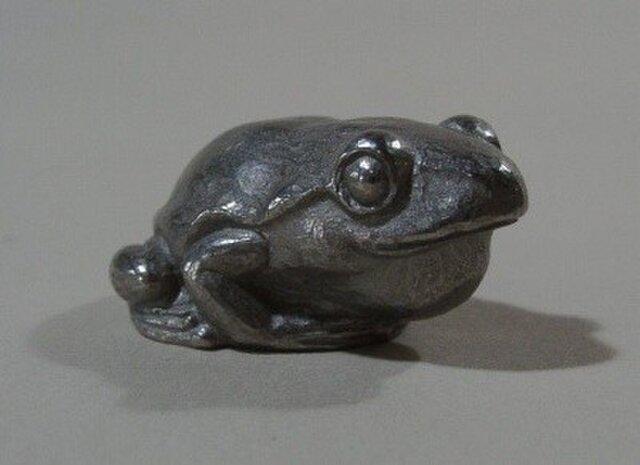 蛙の画像1枚目