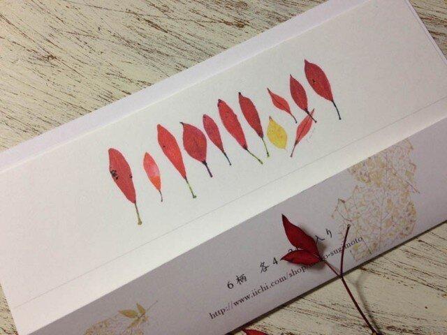 いろいろな葉っぱ 一筆箋の画像1枚目