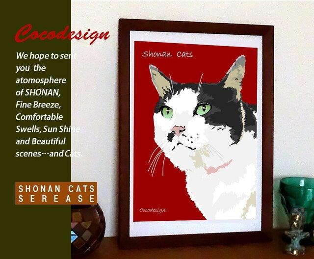 湘南Cats ポートレイト7 うす色ぶち猫の画像1枚目