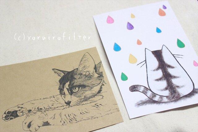 猫のポストカードセットの画像1枚目