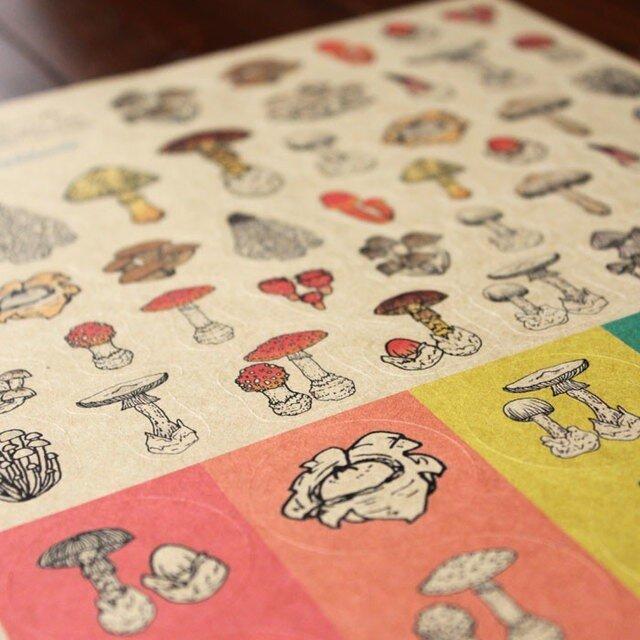 ●キノコ図鑑シリーズ● キノコと毒キノコのシールの画像1枚目