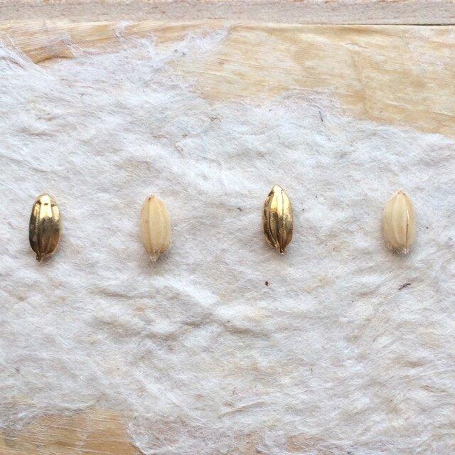 *穀物シリーズ*もみ粒ピアス(金色/シリコンキャッチ)の画像1枚目