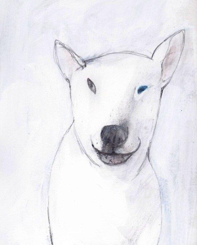 dogの画像1枚目