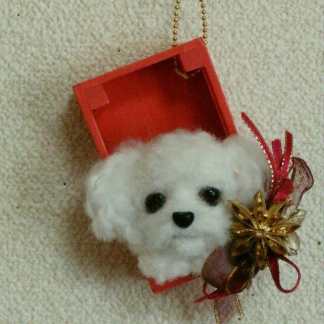 羊毛フェルトのクリスマスオーナメント(犬・トイプー)の画像1枚目