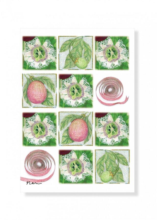 クリスマスカード 白い時計草のクリスマスの画像1枚目