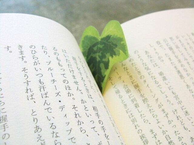 ivy paper(アイビーペーパー)の画像1枚目