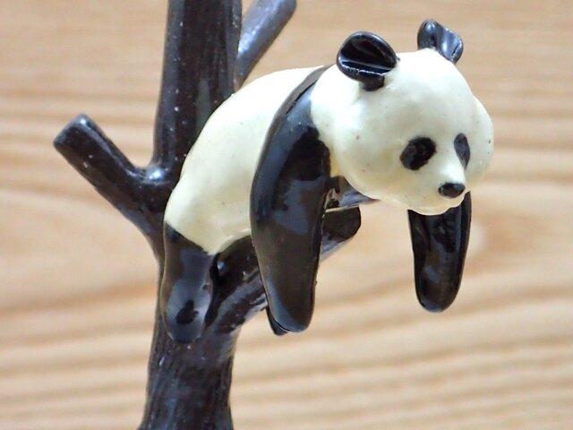脱力!脱力!雪国パンダ−Aの画像1枚目