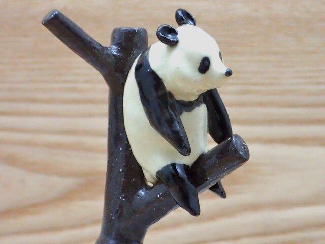 脱力!脱力!雪国パンダ−Bの画像1枚目