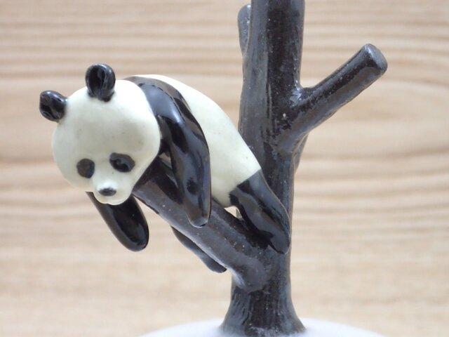 脱力!脱力!雪国パンダ-Eの画像1枚目