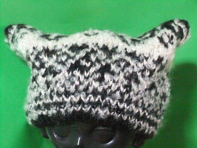 猫耳帽子の画像1枚目