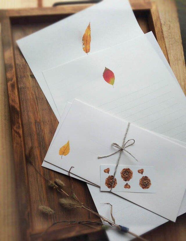 落ち葉の便箋の画像1枚目